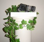 Hide a Camera decorative column
